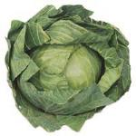 Fresh Produce Cabbage Whole each