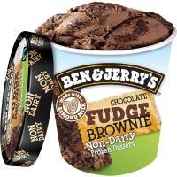 Ben & Jerry's Chocolate Fudge Brownie Non-Dairy Frozen Dessert 458ml
