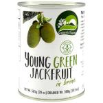 Natures Charm Jackfruit Young Green In Brine 565g