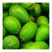 Produce Feijoas loose per 1kg
