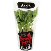 Fresh Produce Basil Living Plant each