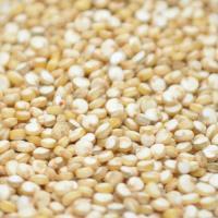Fresh Produce Be Fresh Quinoa per 1kg