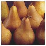 Produce Pears Buerre Bosc loose per 1kg