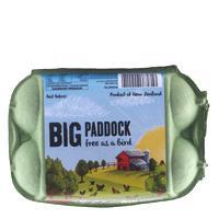 Big Paddock Free Range Mixed Grade 6PK