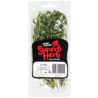 Superb Herb Thyme Fresh packet 12g