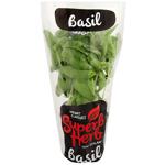 Superb Herb Basil Herb Pot 1ea