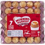 Morning Harvest Size 7 30PK