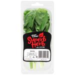 Superb Herb Basil 40g