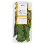 Tasman Bay Herbs Mint 10g