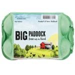 Big Paddock Free Range Eggs 6ea