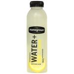 Homegrown Water + Raw Lemon Juice 485ml