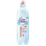 Cool Ridge Immunity Vitamin Spring Water 450ml