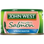 John West Springwater Salmon Tempters 95g