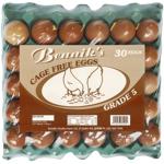 Bennik's Cage Free Eggs Grade 5 30ea