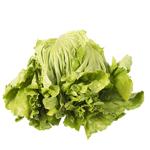 Produce Lettuce Iceberg 1ea