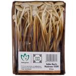Produce Golden Needle Mushrooms 100g