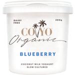 Co Yo Organic Blueberry Coconut Milk Yoghurt 300g