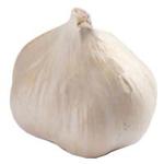 Fresh Produce Garlic Bulb NZ