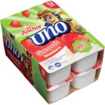 Anchor Uno Yoghurt Strawberry 12pk