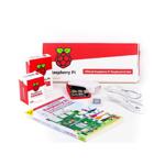 Raspberry Pi Official Desktop Kit with Raspberry Pi 4 Model B Board 2GB SEVRBP0229