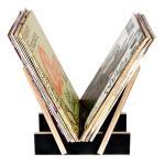 Flea Market Vinyl Record Storage Rack (30)