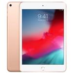 iPad Mini 5 7.9in WiFi 256GB (2019)