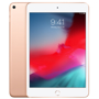 iPad Mini 5 7.9in WiFi 256GB (2019)