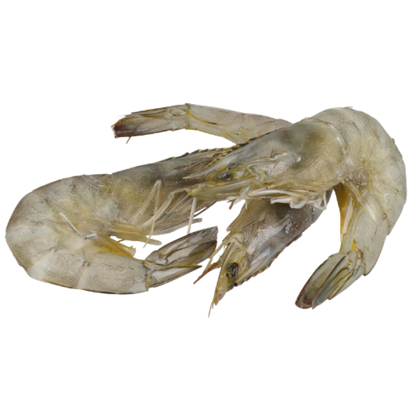 Seafood Whole Raw Vannamei Prawns 1kg