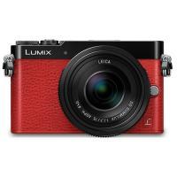 Panasonic Lumix DMC-GM5 + 12-32/3.5-5.6