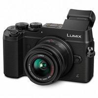 Panasonic Lumix DMC-GX8 + 14-42/3.5-5.6